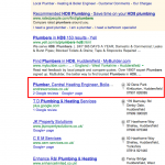 Plumbing website result